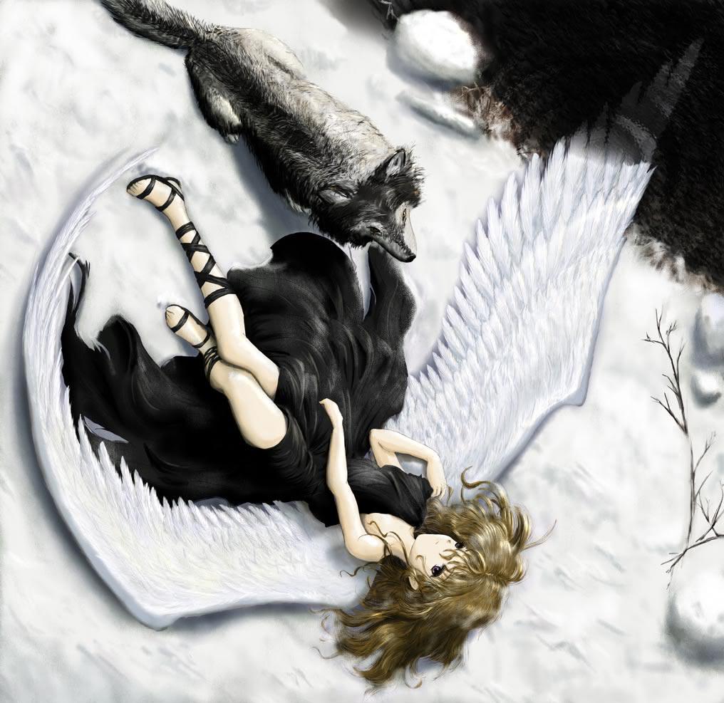 Ada & Quill Fallen_angel
